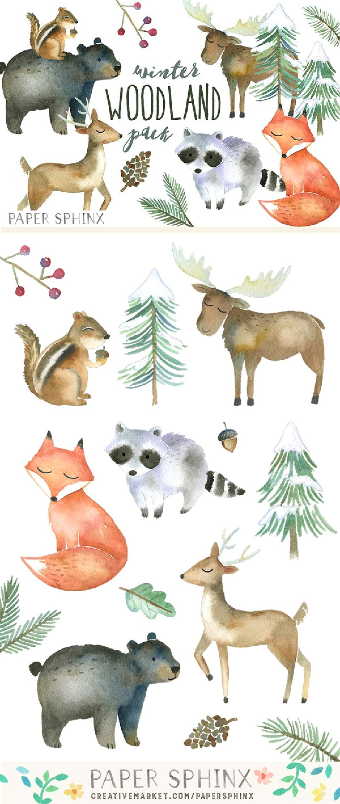 Winter Woodland Watercolor Pack forest animals winter ...