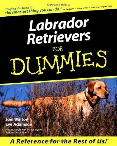 Royal Canin Dry Dog Food Labrador Retriever Puppy 33 Formula 30 Pound Bag On Amazon Labrador Retriever