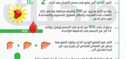 معلومات عن الكبد Ios Messenger