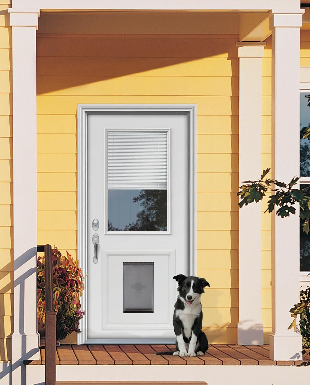 Custom doors with doggie door jeld wen steel and for Back door with window that opens