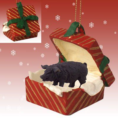 Black Pig Red Gift Box Christmas Ornament Conversation Concepts http://www.amazon.com/dp/B003V40232/ref=cm_sw_r_pi_dp_JAopwb1FFRT7F