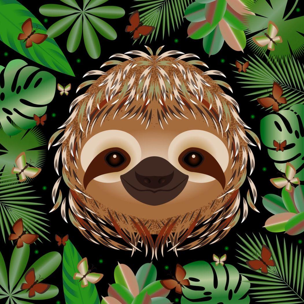 Pin by on Sloth (My spirit animal) Sloth