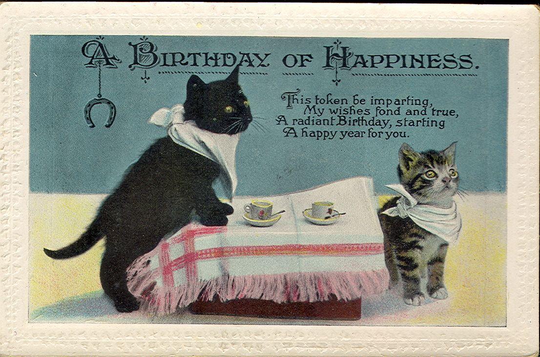 Vintage Cat Postcard 027 Kittens Vintage Postcards Vintage Antiques Cat Birthday Card