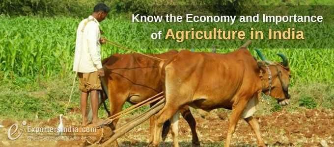 importance of farmers in india