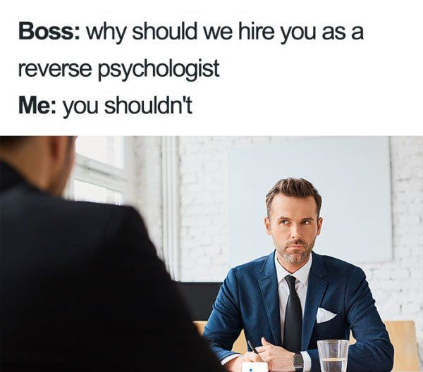 Ever Bombed A Job Interview These Memes Will Help Thechive Funny Jokes Haha Funny Funny