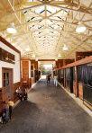 Devine Ranch, CA For Michelle