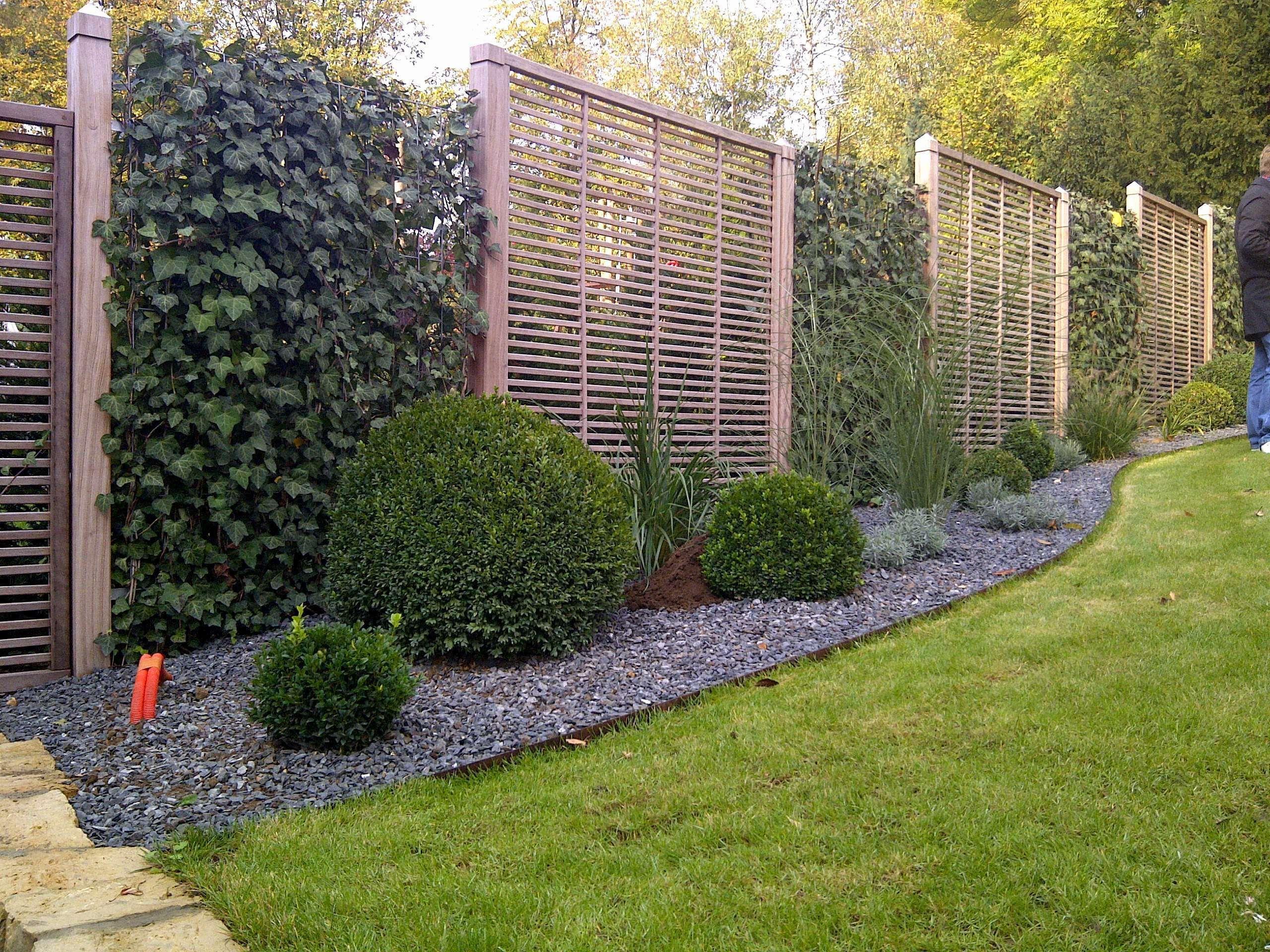 Sichtschutz Garten Pflanzen Luxus Die Meisten Schon Sichtschutz