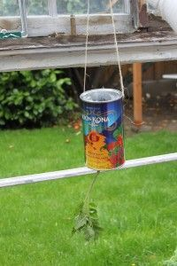 Make Your Own Topsy Turvy Style Hanging Tomato Planter And Recycle