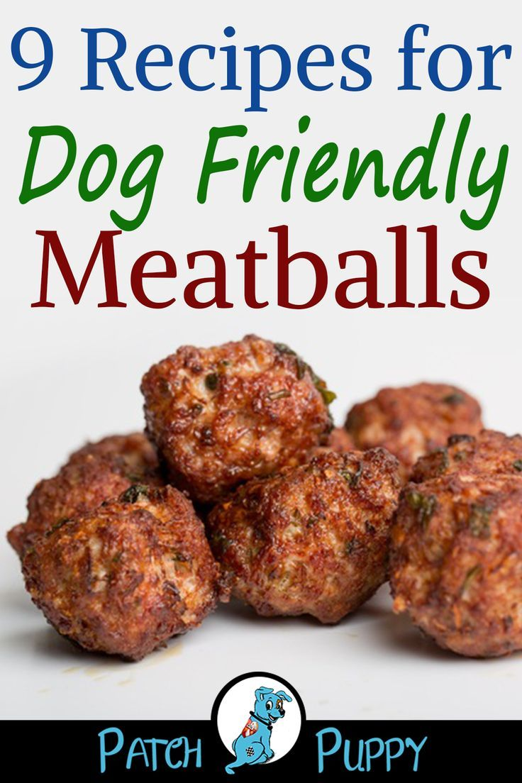 9 Recipes for Dog Friendly Meatballs - PatchPuppy.com - simple and tasty for the whole family!