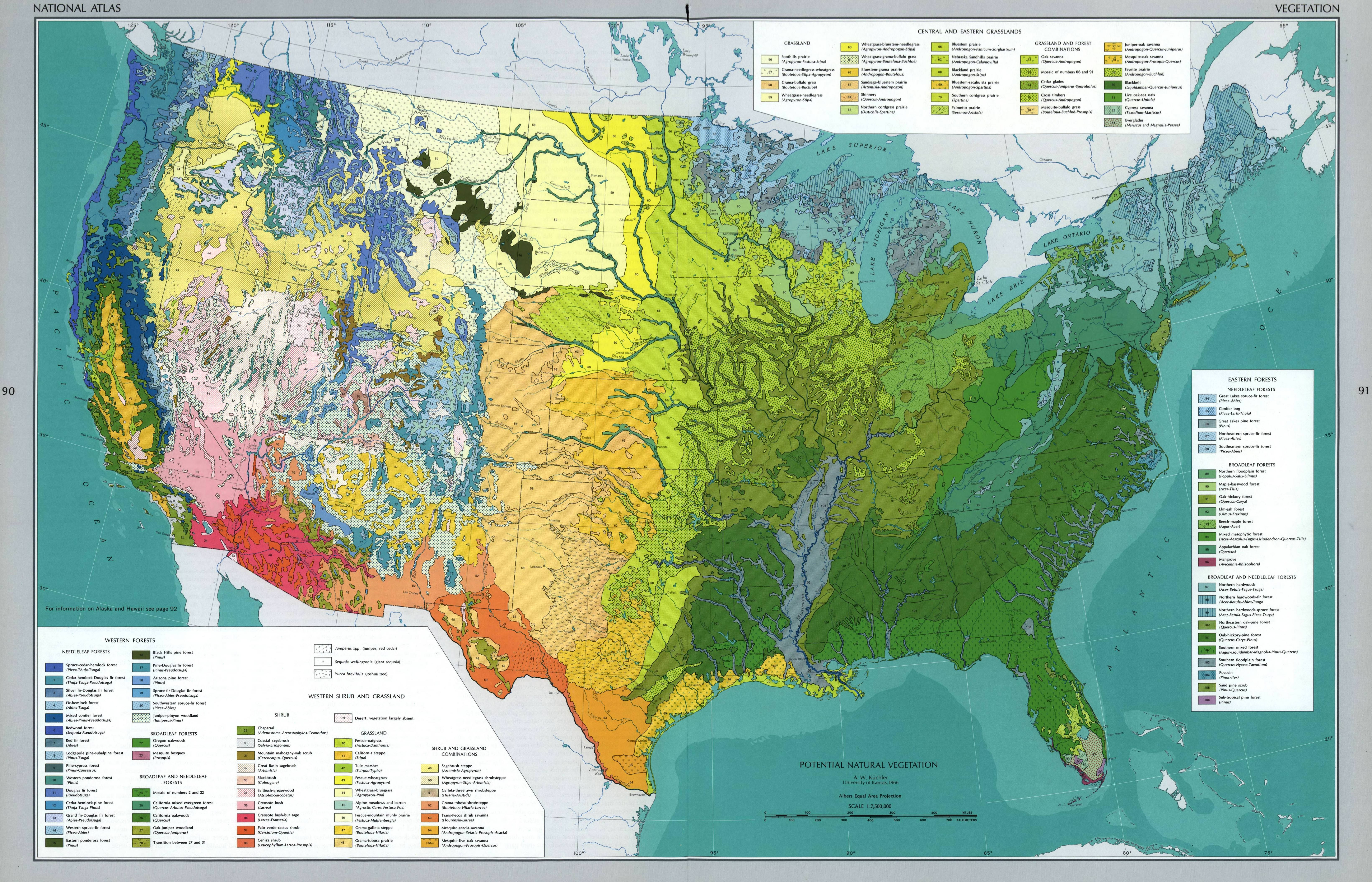 Natural Vegetation in contiguous United States, 1966 | geo ...