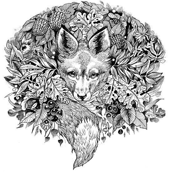 Quatang Gallery- Hidden Fox By Saraknid Fox Art Print Fox Art Fox Coloring Page