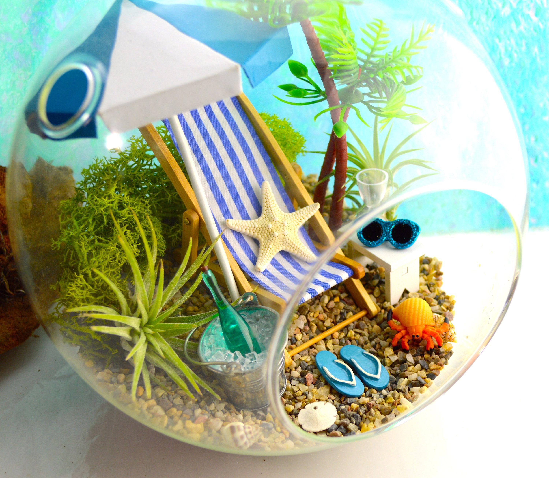 Beach Terrarium Kit Beach Decor Air Plant Terrarium Summer