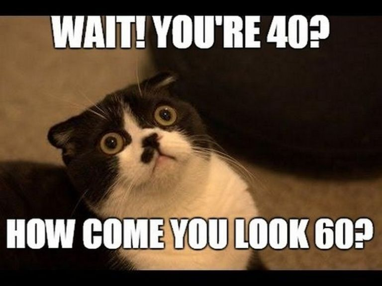 101 Funny 40th Birthday Memes To Take The Dread Out Of Turning 40 40th Birthday Funny Birthday Meme Happy Birthday Meme