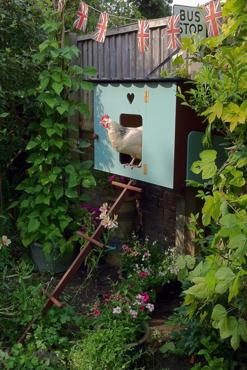 the brockham chicken coop www oakdene coops co uk must have this