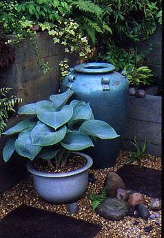 Hostas Blue Mammoth I Love The Play On The Color Blue With The