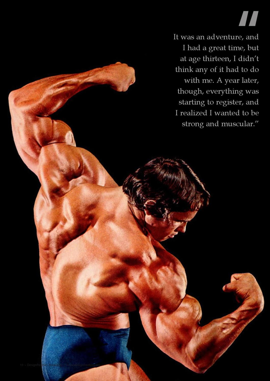 Fashion Fitness Magazine January 2013 Arnold Schwarzenegger Bodybuilding Schwarzenegger Bodybuilding Arnold Schwarzenegger