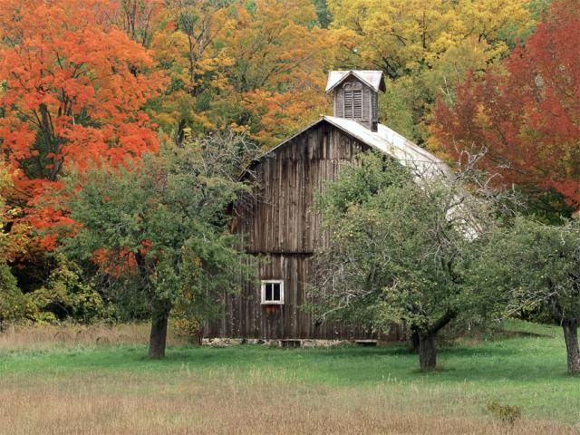 Bureau Bladen 46 Free Fall Wallpapers And Backgrounds: Rustic Barn By