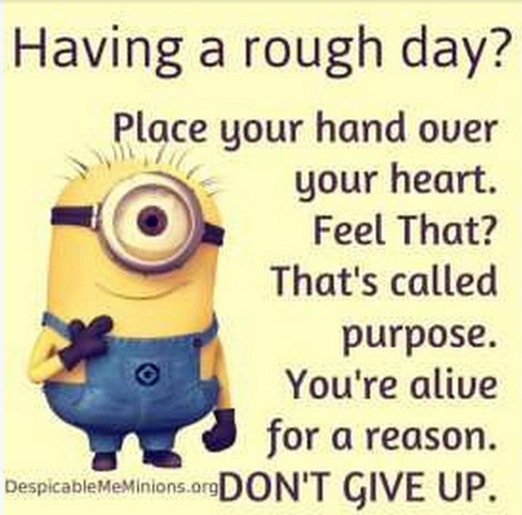 Facetious Minions pictures with quotes (09:01:29 PM, Saturday 24...