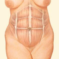 Pure garcinia weight management system