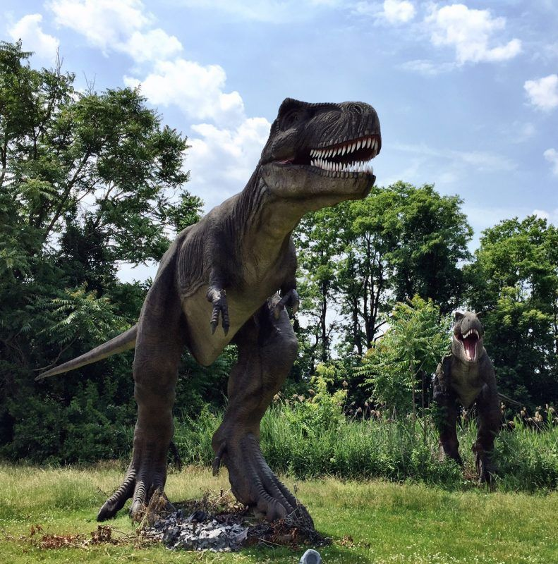 Field Station: Dinosaurs is like the base camp from Jurassic