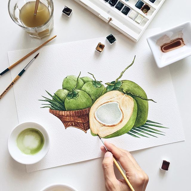 Young Coconut With Thai Basketry Watercolor Illustration For