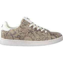 Photo of Mexx Sneaker Low Eeke Beige Damen Mexx