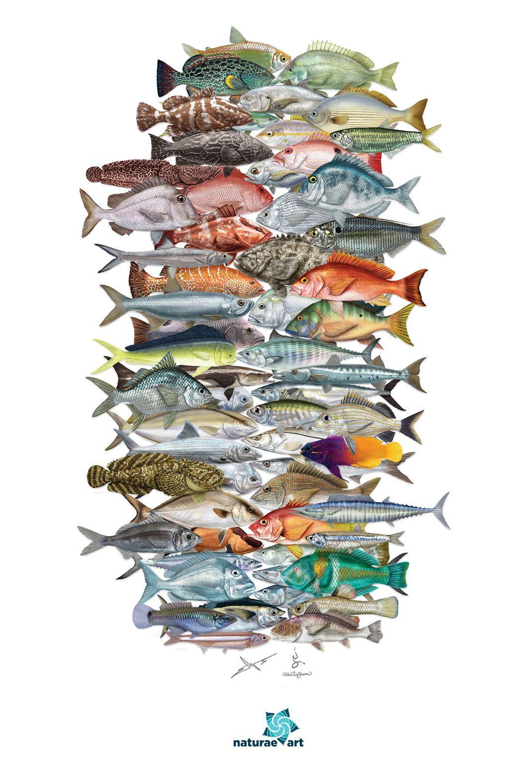 plentiful fish dating site