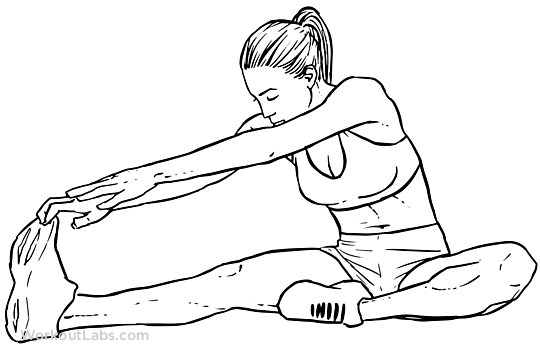 hamstring stretch stretch pinterest contortion
