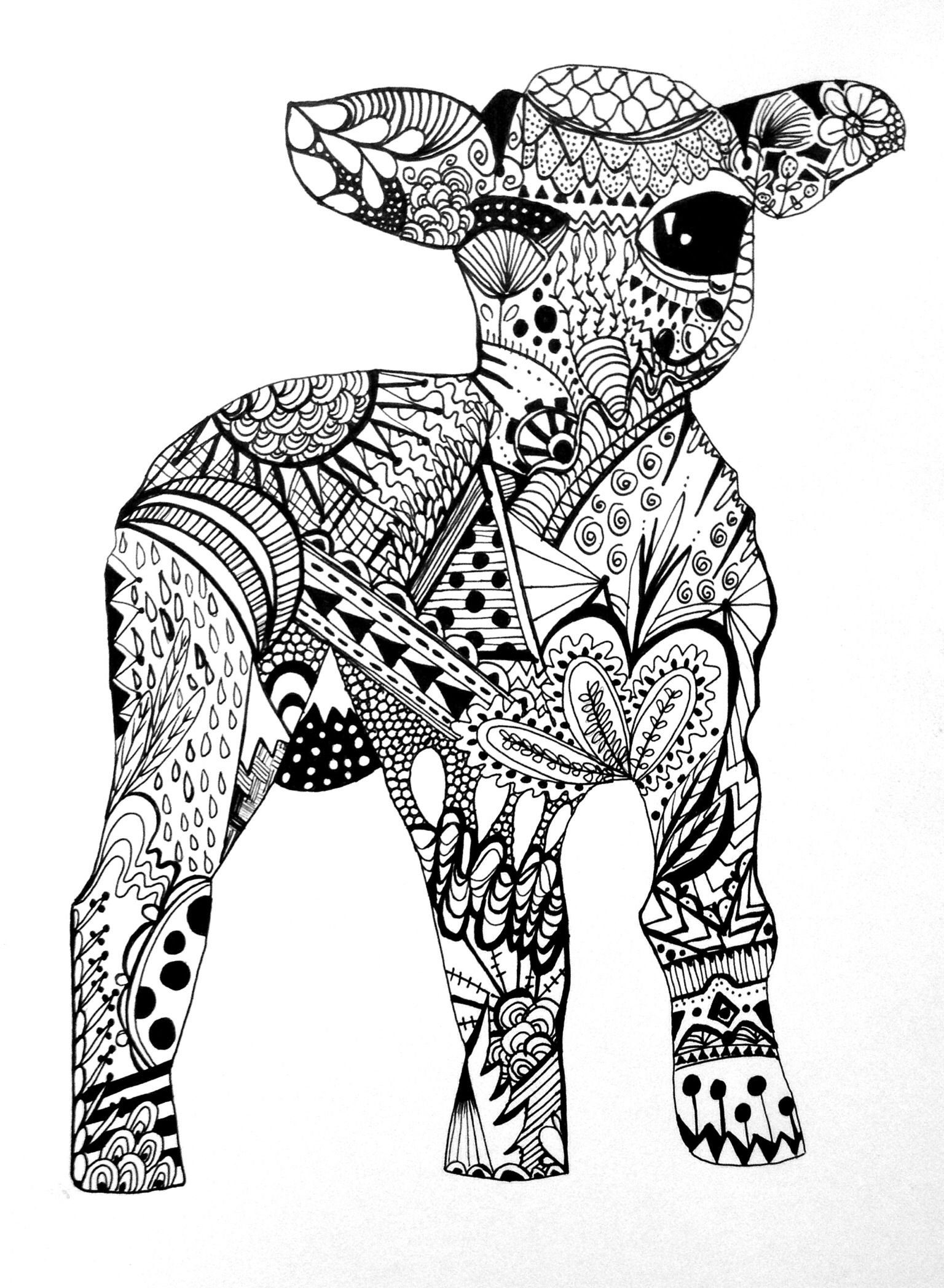 Zentangle Lamb By George Draws Animal Adult Coloring Book Art