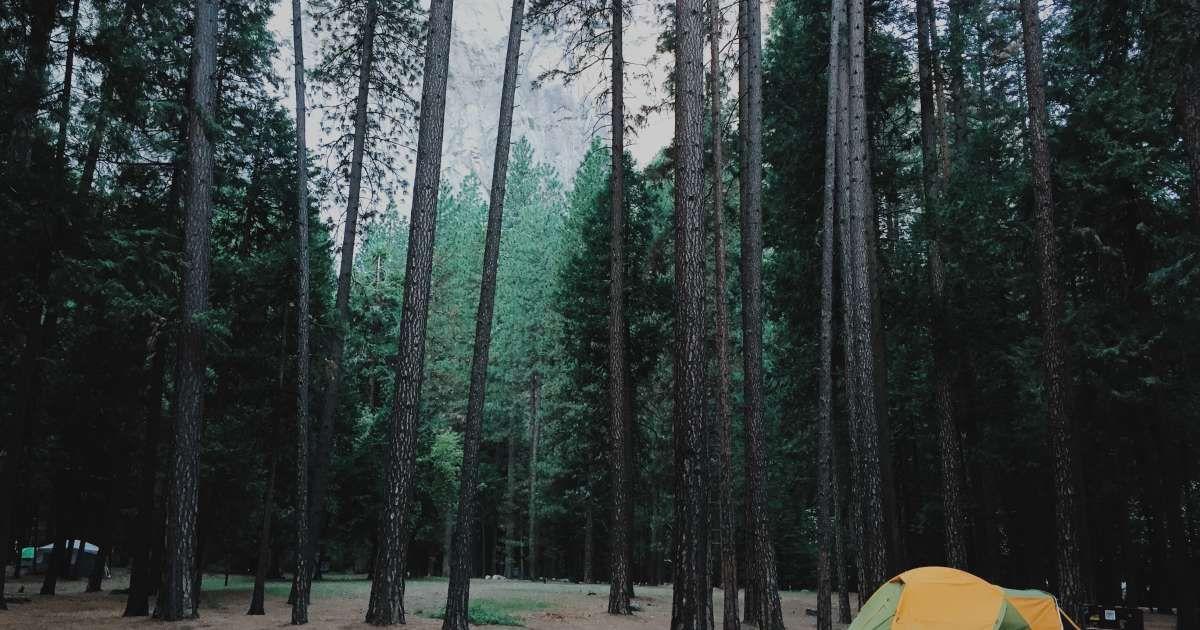 Upper Pines Campground, Yosemite, CA: 34 Hipcamper reviews and 65 photos · Mammoth  Lakes ...
