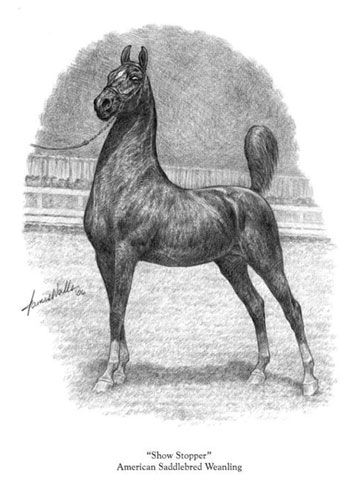 Show Stopper Print | The American Saddlebred Museum Gift Shop