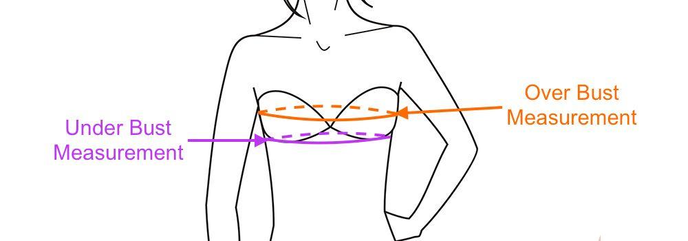 Measure Bra Size   Bra size charts, Measure bra size, Bra ...