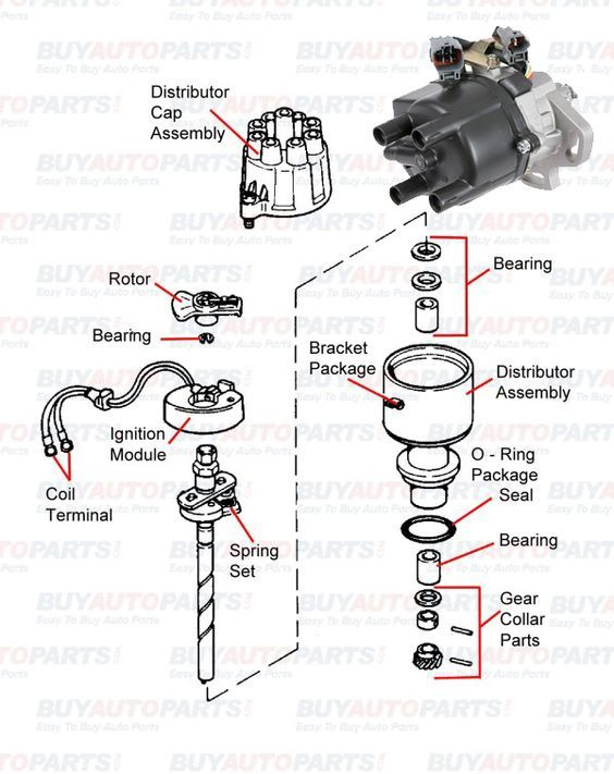The ignition distributor is a crucial electrical component in any the ignition distributor is a crucial electrical component in any car engine the distributor carries ccuart