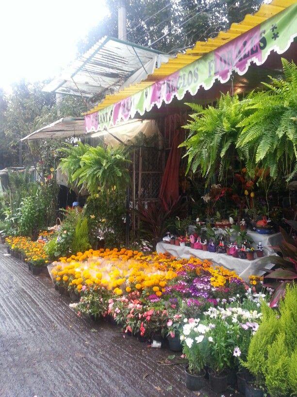 Mercado de flores en Xochimilco, México