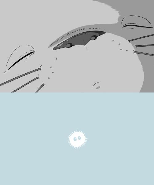 tonari no totoro, anime, and studio ghibli image