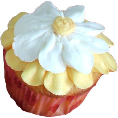 vanilla cupcake topped with white and yellow buttercream flower - cupcakes York PA.
