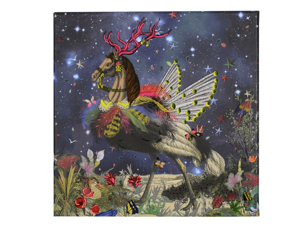 Christian Lacroix Crazy Horse Boxed Notecard Sets