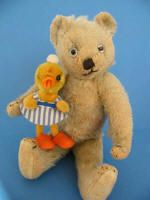 This lovely little rare size 10 inch bear is Pod the Farnell, He dates c 1920's and has glass eyes with most of paint worn off, stitched nose and mouth , is fully jointed with some mohair wear all over as you can see.