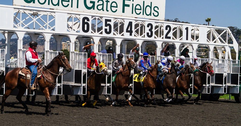 Go to golden gate fields racecourse in united states