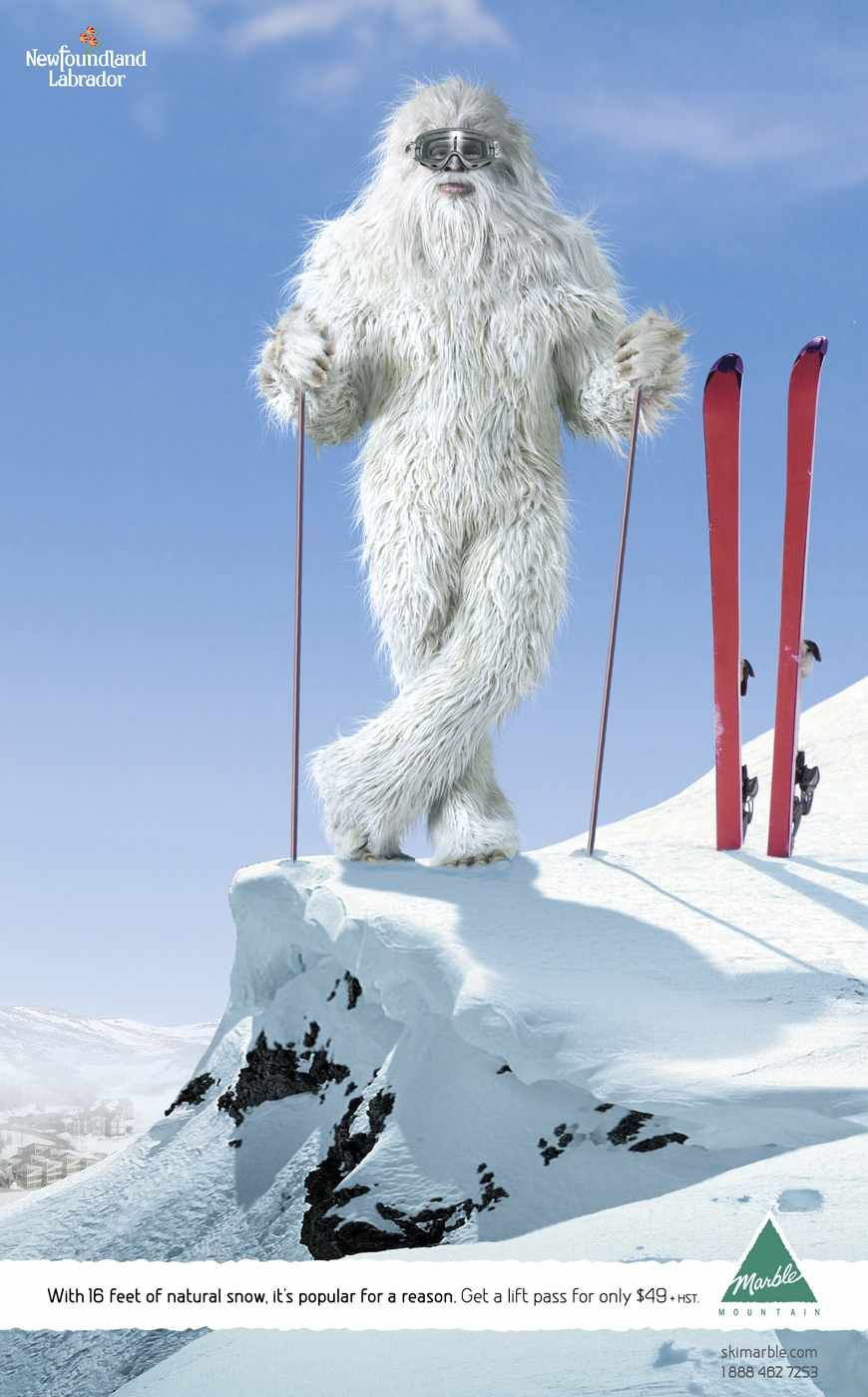 Pin By Amanda Anez On Yeti On Vacation Travel Creative Yeti Creative Pictures
