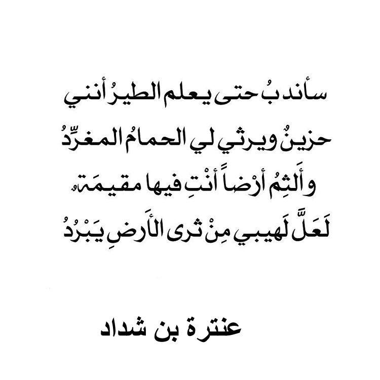 Pin By Criasioh On شعر Quotes Wisdom Arabic