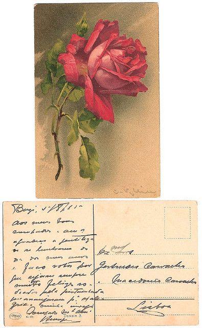 Vintage postcard, 1915. Catharina Klein