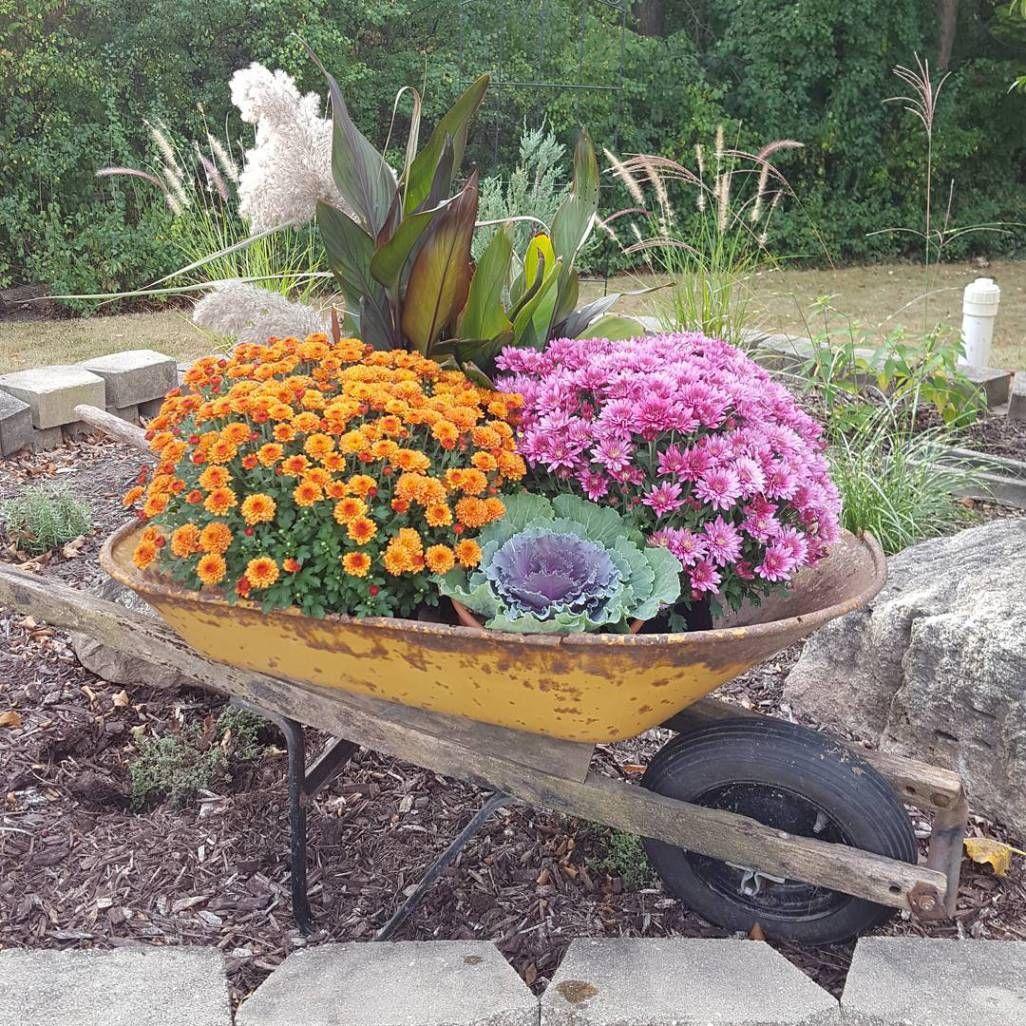 Carretilla Con Flores Anaranjadas Y Rosadas Flores Carretas Para Jardin Lechos De Jardin Elevados Jardines