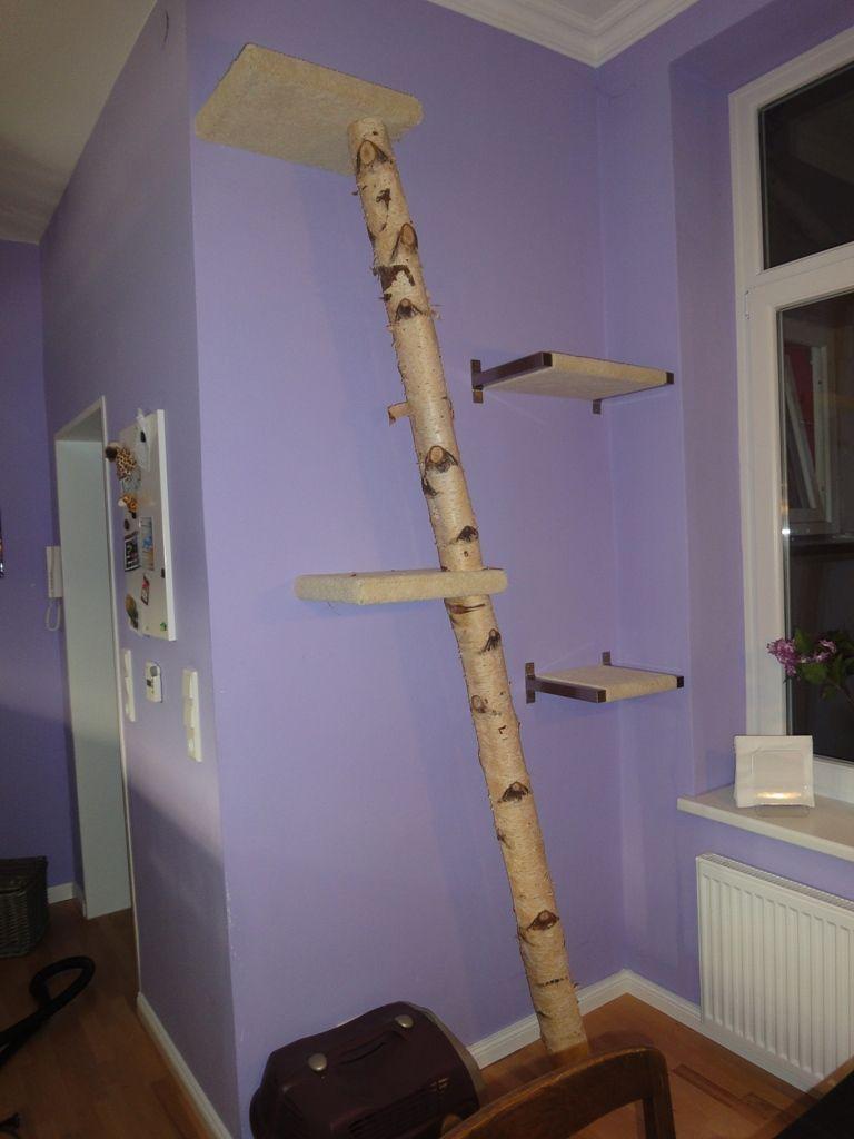 natur kratzbaum ohne sisal umwicklung mit winkeln an. Black Bedroom Furniture Sets. Home Design Ideas