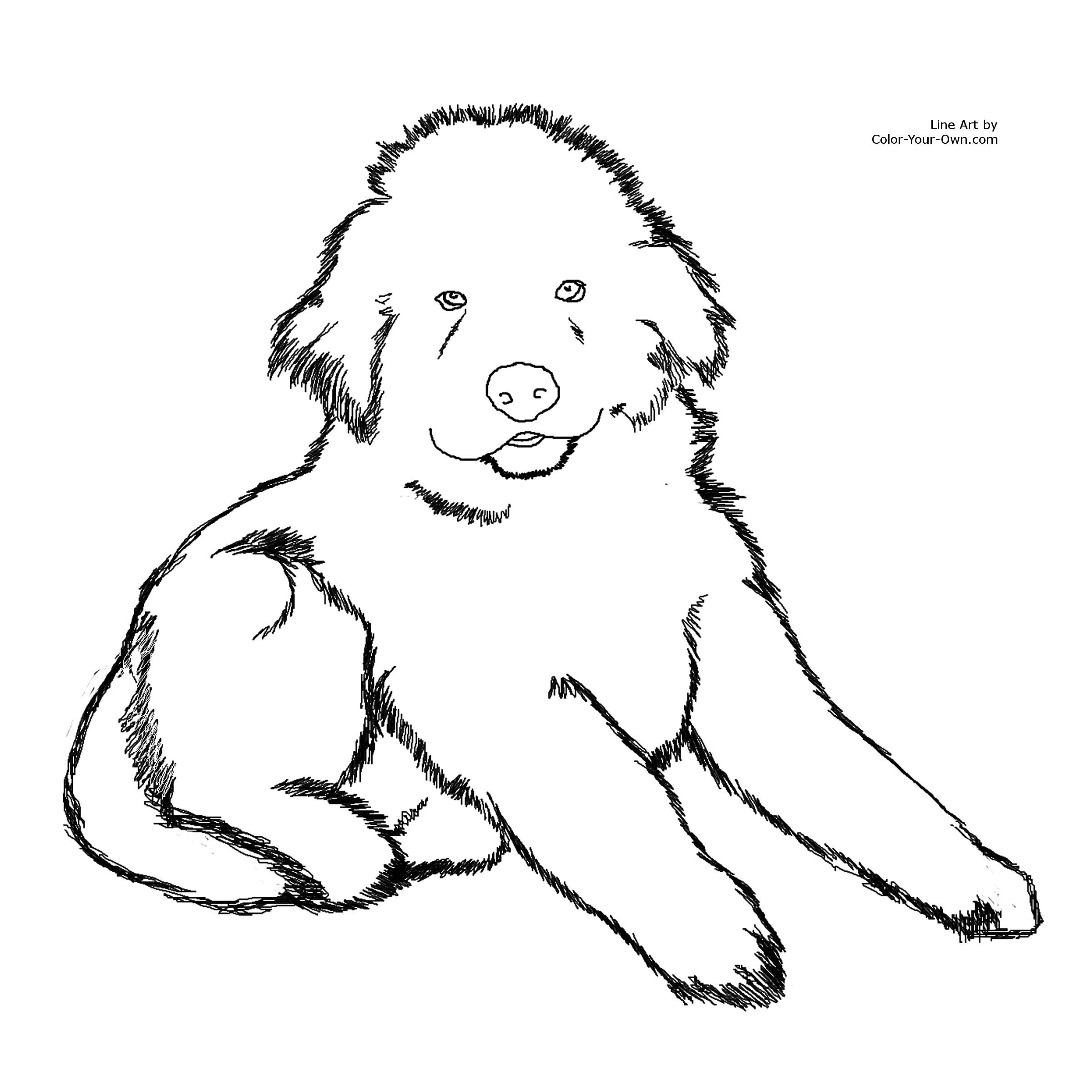 Dog Coloring Pages Bing Images Dog Coloring Page Puppy