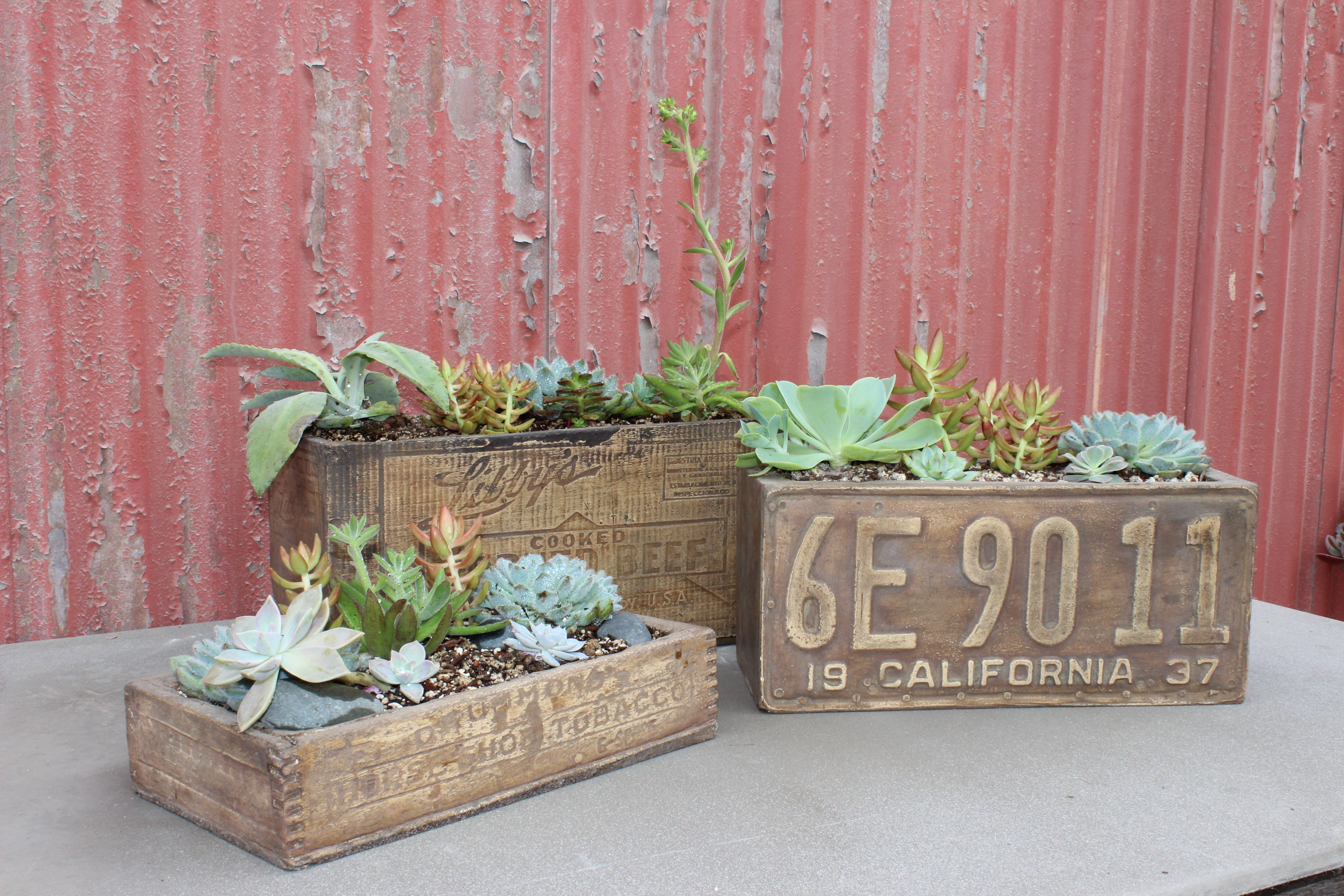 Concrete Antique Planter Bo With Natural Wood Finish