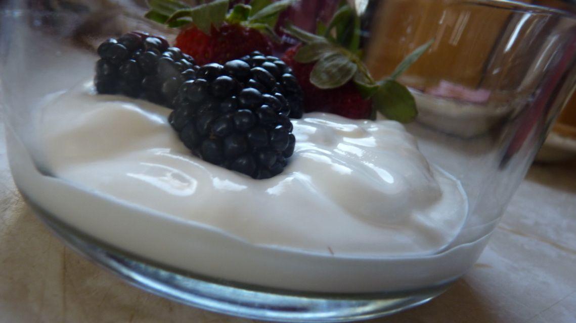 Featured products food yogurt yogurt maker