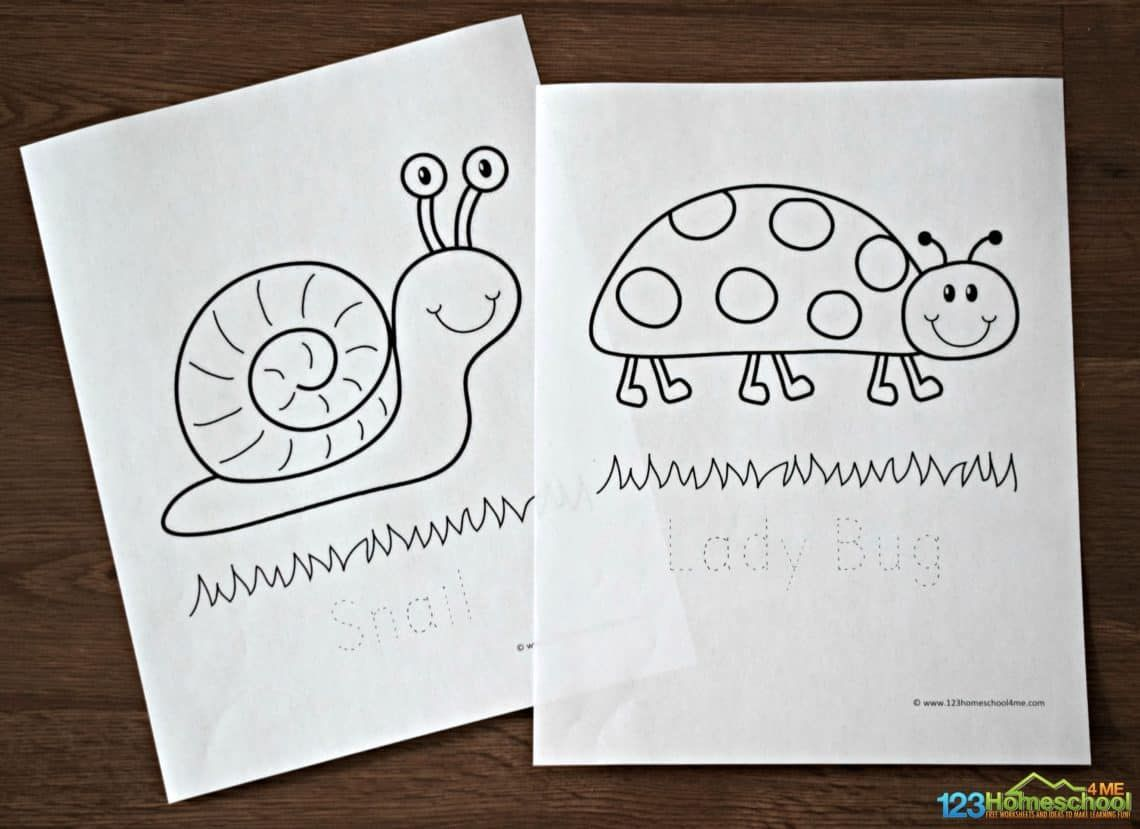 Free Bug Coloring Sheets