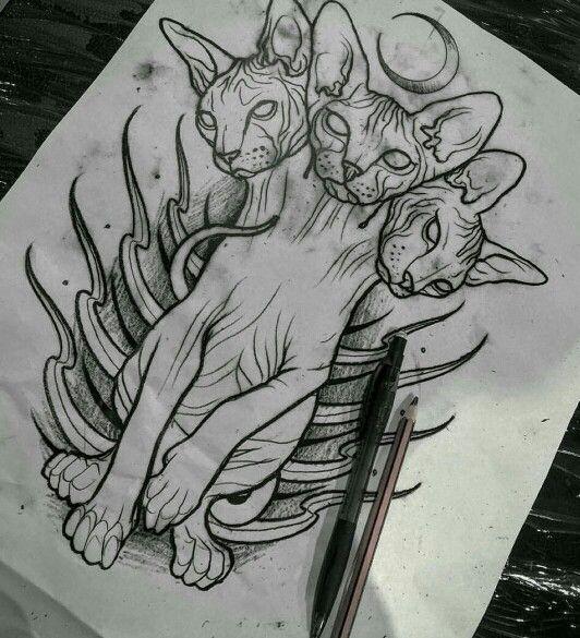 Cerberus Cat