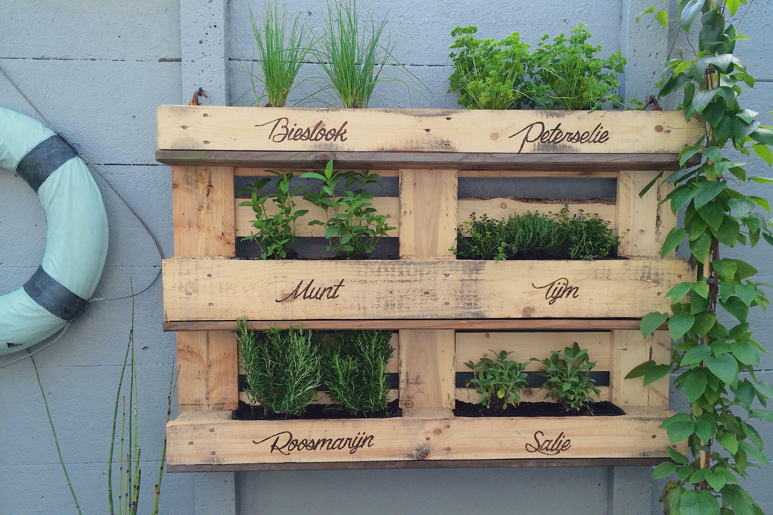 Pallet Herb Rack Pallet Kruiden Rek Vertical Gardening